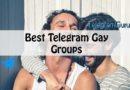 telegram gay groups